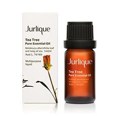 茶树香熏油